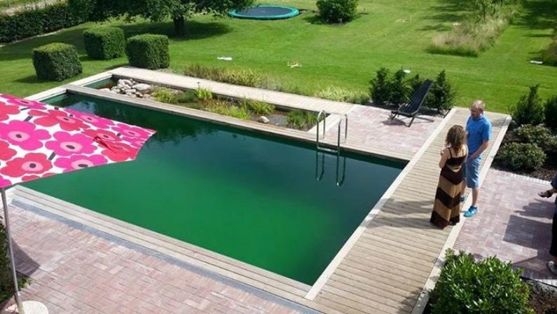 Foto af Lones svømmesø