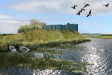 Visualisering af vådområde, idékonkurrence Reykjavik Wetlands