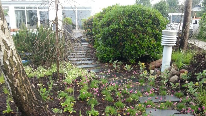 Sti fra haven op mod huset