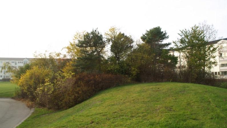 De grønne arealer omkring Baldersbo, Afd 12