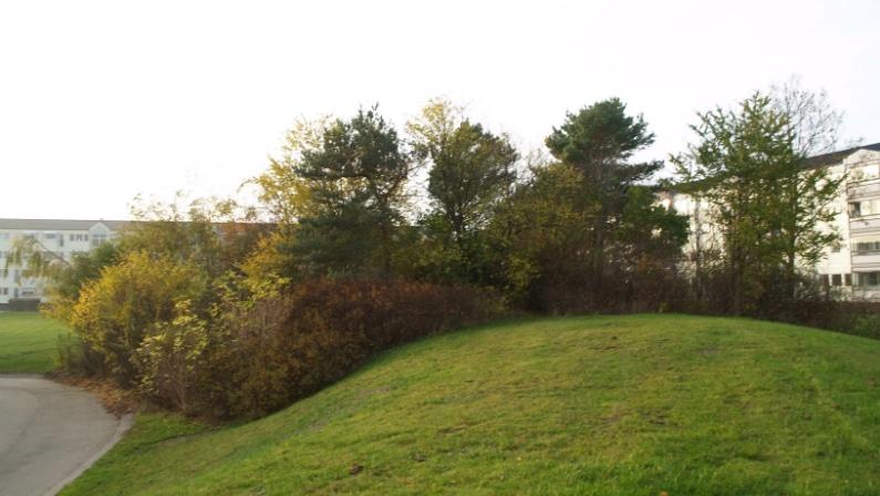 Drift af grønne arealer i Baldersbo Afd. 12, Ballerup